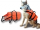 Chalecos Salvavidas para Animales