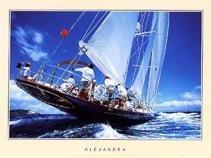 Alejandra - Lamina - Reproducción fotográfica impresa a todo color sobre lamina de 150g presentada en formato de 30x40 cm.
