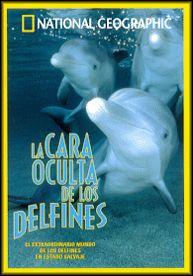La Cara Oculta de los Delfines - DVD - Tenemos de los delfines la imagen de unas criaturas cariñosas y sensuales. Pero los delfines en estado salvaje son tambi´n depredadores implacables y extremadamente inteligentes...