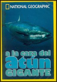 A la Caza del Atun Gigante - DVD - Una de las criaturas más impresionantes de la naturaleza, es un habitante de los océanos, a menudo visto, pero pocas veces comprendido...