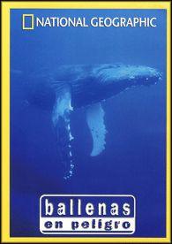 Ballenas en Peligro - DVD - Pocos seres hay tan misteriosos y fascinantes como las ballenas. Desde los cayos de Florida hasta las aguas del Artico, desde el Puguet Sound hasta las Islas Pacífico Sur, las ballenas corren cada vez más riesgos.
