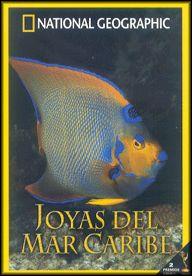 Joyas del Mar Caribe - DVD - Las aguas del Caribe, famosas por sus tesoros ocultos, guardan también otro tipo de riqueza natural...