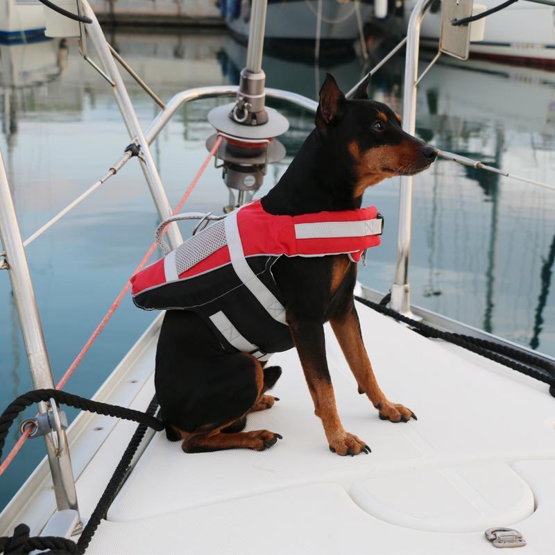 Chaleco Salvavidas, ayuda Flotabilidad para Mascotas